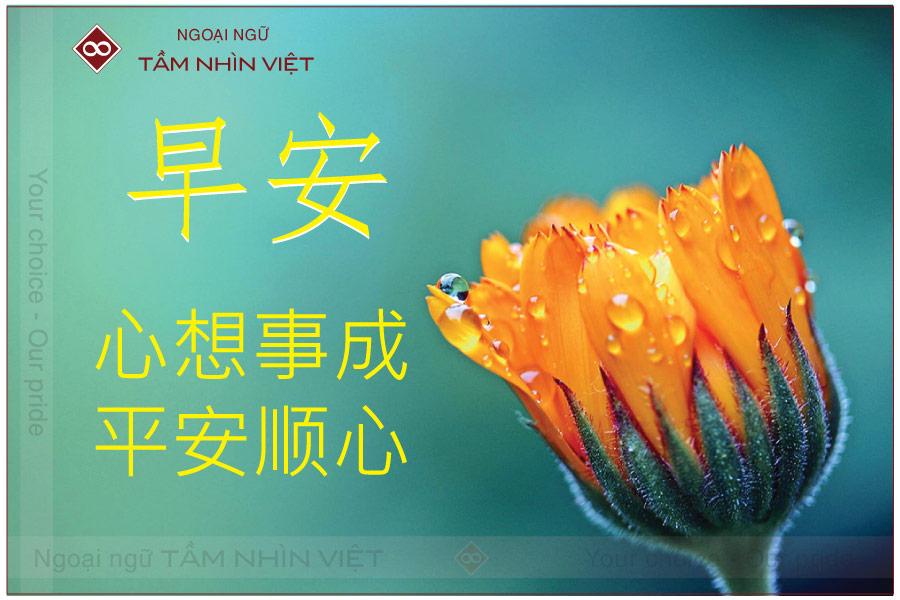 Mẫu câu xin chào tiếng Trung