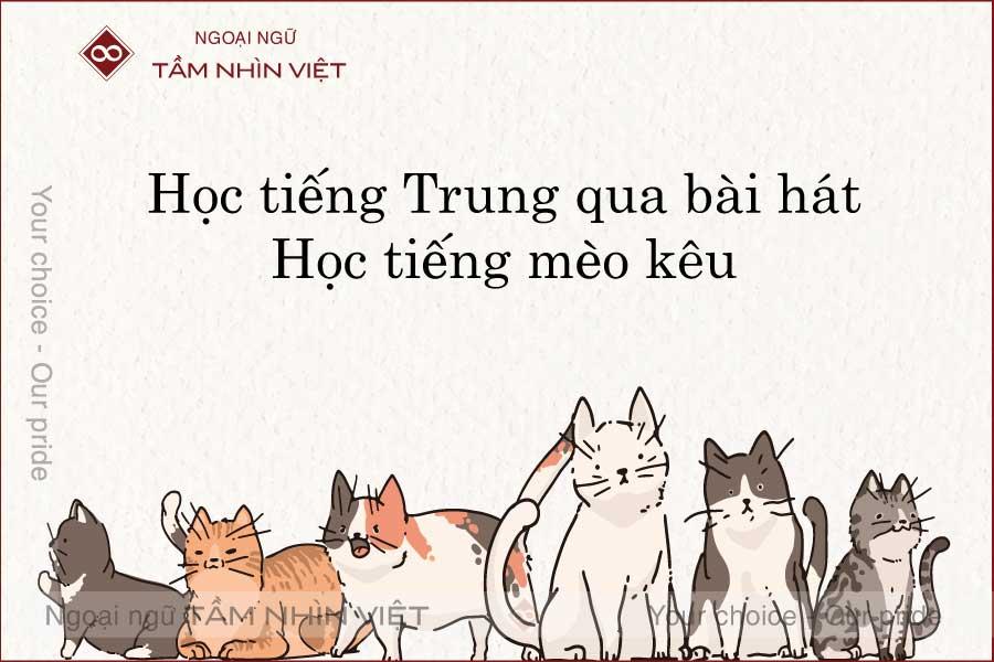 Học tiếng mèo kêu tiếng Trung - Phiên âm - Lời Việt