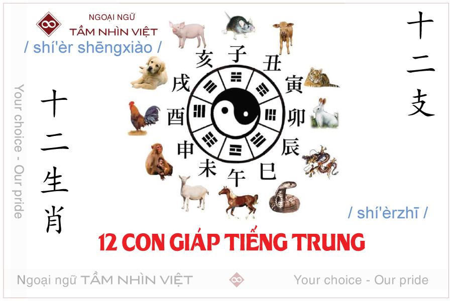 12 con giáp tiếng Trung là gì